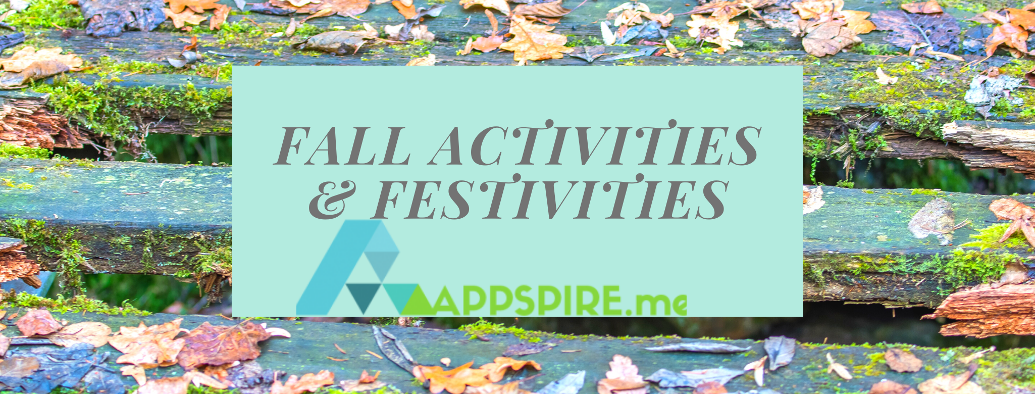 Fall Activities & Festivities